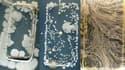 Un téléphone portable est bourré de bactéries.