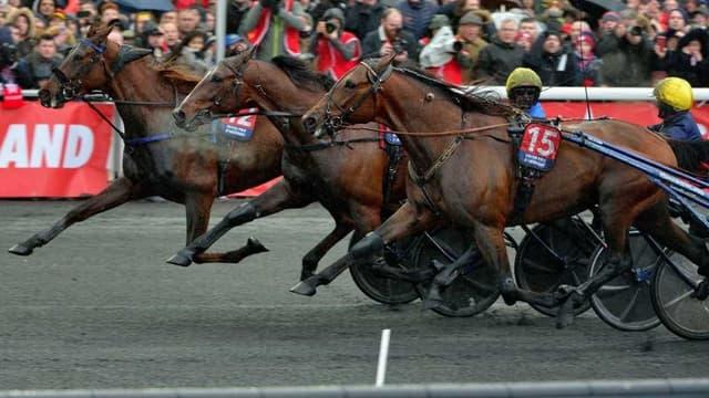 Le Grand Prix d'Amérique a lieu ce dimanche 26 janvier à Vincennes