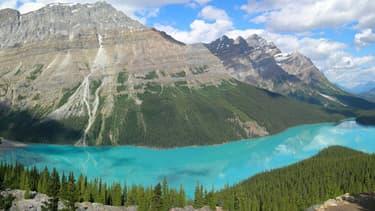 Le lac Peyto dans le parc national de Banff, dans l'Alberta, au Canada.