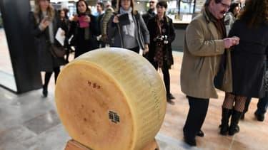 Le Parmesan séduit de nombreux consommateurs hors des frontières de l'Italie. (image d'illustration)