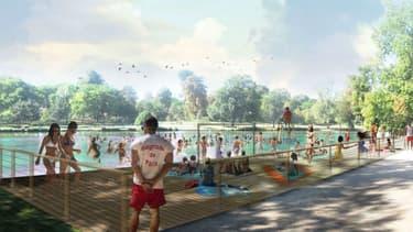 La mairie de Paris veut créer un espace de baignade dans le lac Daumesnil.