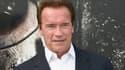 Arnold Schwarzenegger lors de la première du film' 'Terminator Genisys' à Hollywood en juin 2015.