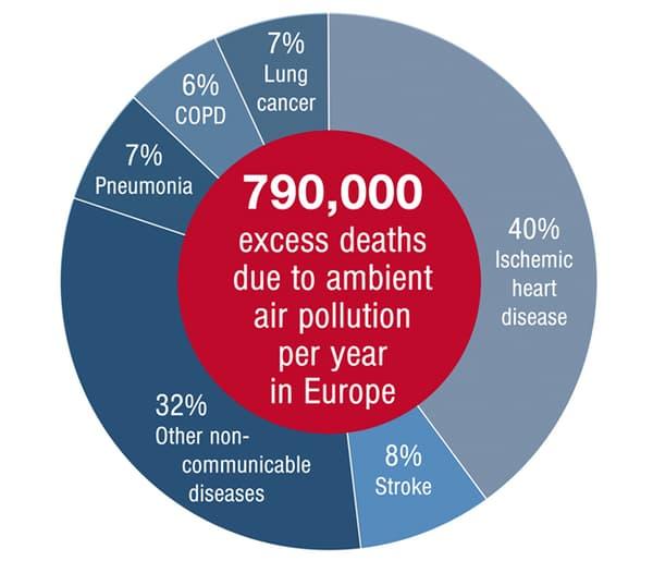 Excès de mortalité estimé attribué à la pollution de l'air en Europe et aux catégories de maladies associées.