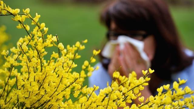 La saison des allergies aux pollens est de retour.