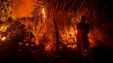 Un feu de forêt à Pekanbaru, en Indonésie, le 19 septembre 2019.