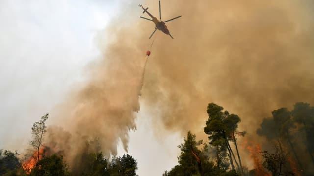 Un hélicoptère largue de l'eau sur un incendie de forêt, le 5 août 2021 près du village de Kechries (Grèce)