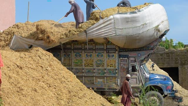 Les plus grands producteurs mondiaux de matières premières agricoles, comme l'Inde, compte réduire leurs exportations cette année.