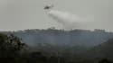Un hélicoptère balaye une zone sinistrée
