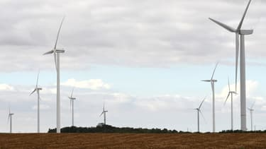 Les objectifs fixés par la loi sur la transition énergétique sont loin d'être atteints.