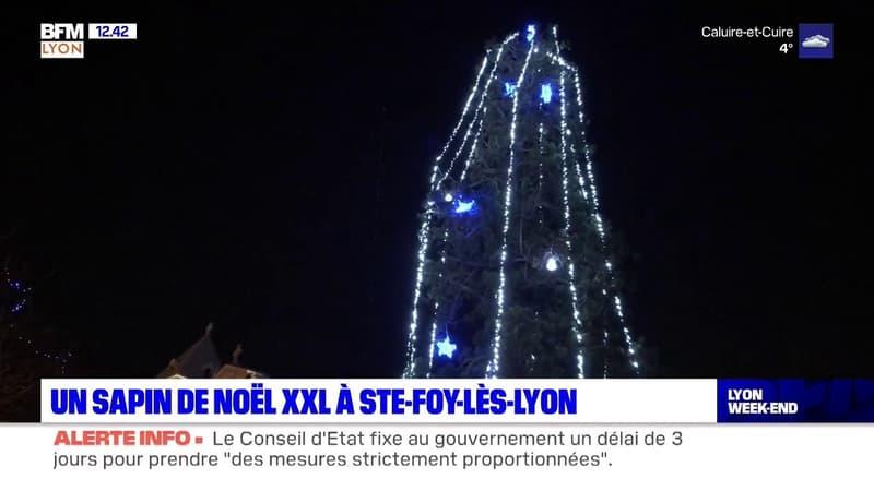 C'est à Sainte-Foy-lès-Lyon que se trouve le plus haut sapin de Noël de la métropole de Lyon