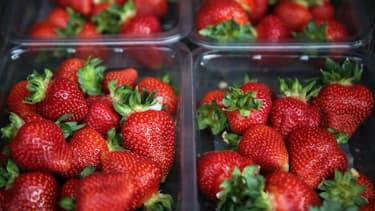 Des fraises - Image d'illustration
