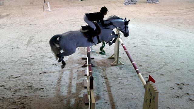 Un cavalier en plein concours hippique - Photo d'illustration