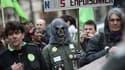 Près de 250 personnes ont participé à la marche verte contre les pesticides, samedi à Paris.