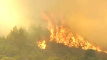 L'incendie qui a touché le nord de Marseille a détruit plus de 3.000 hectares de garrigue
