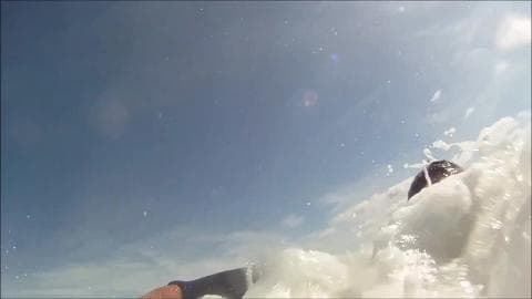 Un phoque joue avec un surfeur à Montalivet - Témoins BFMTV