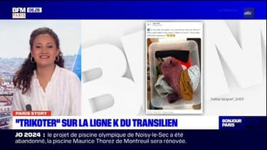 """Paris Story: """"Trikoter"""" sur la ligne K du Transilien"""