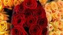 Pour le consommateur, la rose à l'unité pourrait cette année coûter 1,50 plus cher que la normale.
