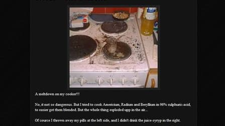 Page du blog de Richard Handl, qui a pris sa cuisinière en photo après avoir tenté d'y faire fonctionner un réacteur nucléaire de fortune. /Image du 4 août 2011/REUTERS/Handout