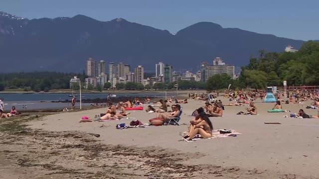 Une plage canadienne ensoleillée.