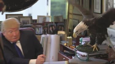 Donald Trump s'est rabrouer par un rapace, lors d'une séance photo pour Time.