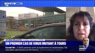 Un premier cas de virus mutant à Tours - 26/12
