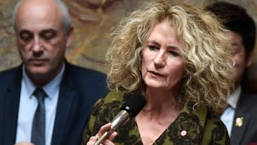 La députée Martine Wonner à l'Assemblée, le 14 novembre 2017
