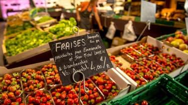 La FNSEA lance un appel pour assurer les récoltes saisonnières