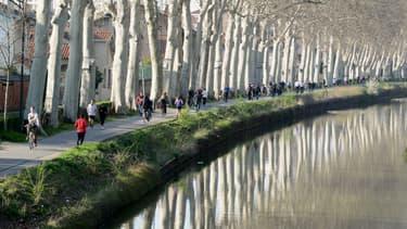 Le canal du Midi à Toulouse en 2014 (image d'illustration)