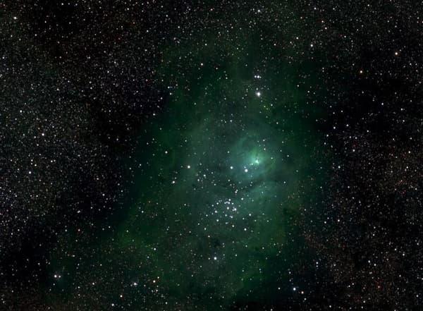 Une petite section de la Voie lactée avec la nébuleuse M8.