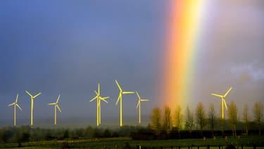 Un champ d'éoliennes à Lisbourg, dans le Nord-Pas-de-Calais.
