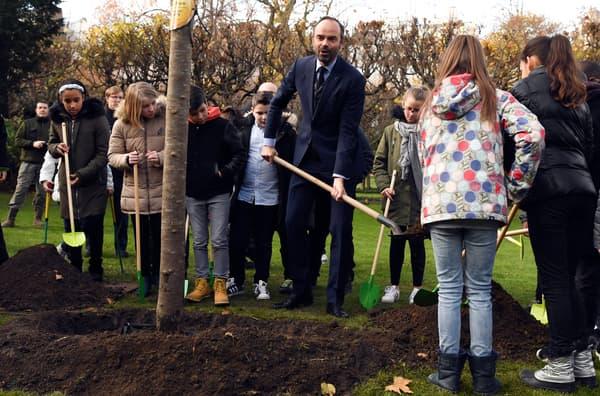 Edouard Philippe plante un pommier dans les jardins de Matignon, le 28 novembre 2017.