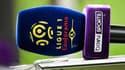 BeIN Media Group détient les droits TV à l'étranger