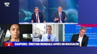 Story 5 : Dauphins, émotion mondiale après un massacre - 16/09