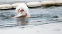 La traditionnelle course de Noël de la Serpentine, ce lac artificiel situé à Hyde Park, au coeur de Londres, a été annulée samedi en raison des eaux prises dans la glace. /Photo prise le 25 décembre 2010/REUTERS/Andrew Winning