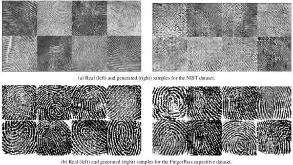 A gauche, de vraies empreintes, à droite, des empreintes générées de façon artificielle.