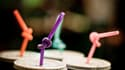 Deux associations organisent samedi à Paris la Journée sans paille