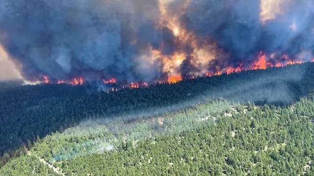 Les incendies ravagent une partie de la Colombie-Britannique au Canada. Image prise le 1er juillet 2021 à Kamloops.