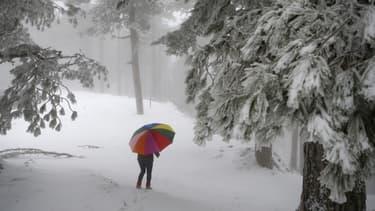 Le sud de la France en partie sous la neige.
