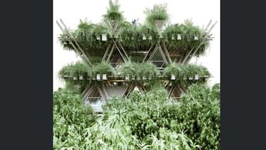 Les infrastructures de la ville seraient en bambou.