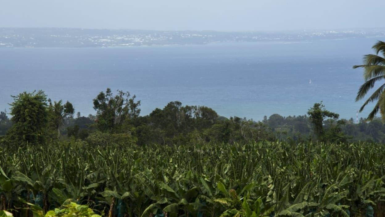 Un nouveau séisme ressenti en Guadeloupe