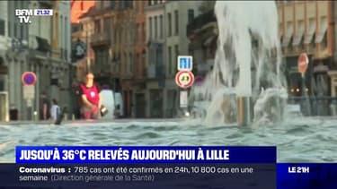 Canicule: jusqu'à 36°C relevés à Lille