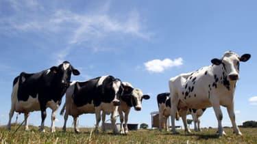 La France perçoit environ 10 milliards d'euros d'aides agricoles chaque année
