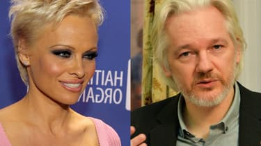 L'actrice Pamela Anderson entretiendrait une liaison avec le fondateur de Wikileaks, Julian Assange.