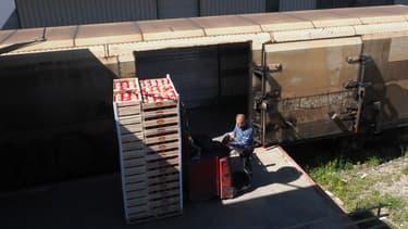 Un employé charge des produits frais dans le train des primeurs, qui part de Perpignan en direction de Rungis.