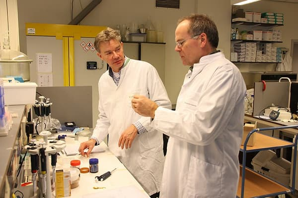 Peter Verstrate et Mark Post dans leur labo.
