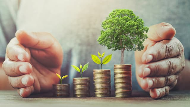 Investissement rural et environnemental