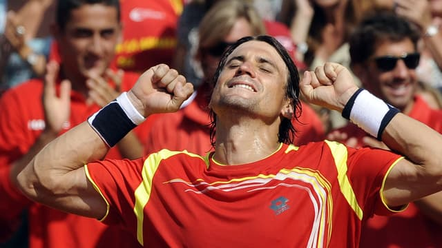 David Ferrer a apporté le point décisif à l'équipe ibérique.