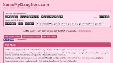 Le site de Stephen McLaughlin demandant aux internautes de choisir le prénom de sa fille qui doit naître début avril.