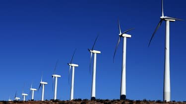 Voltalia souhaite lever 170 millions d'euros pour financer ses nouveaux projets solaires et éoliens. (image d'illustration)