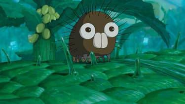 Boro la chenille de Hayao Miyazaki